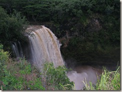 Waimea Falls runneth over