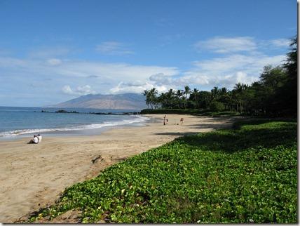 Palauea Beach