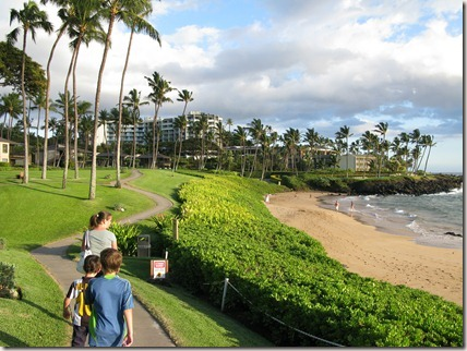 Picture of Wailea